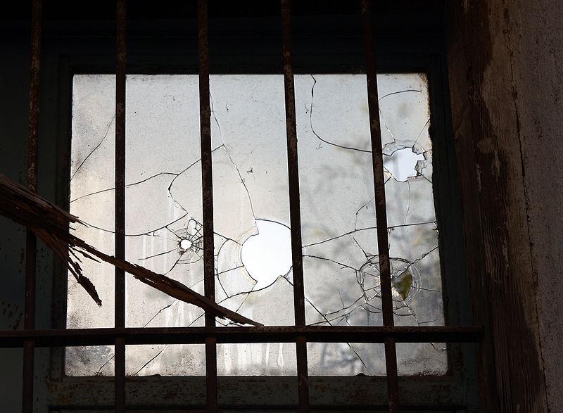 broken window thesis wilson