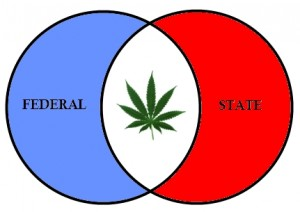 Federalism & Marijuana