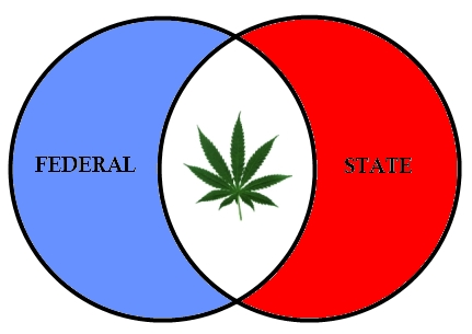 Ven diagram with Federal and State circles with Marijuana leaf in the overlap