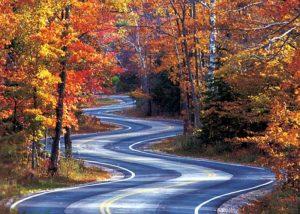 An image of fall in Door County, Wisconsin